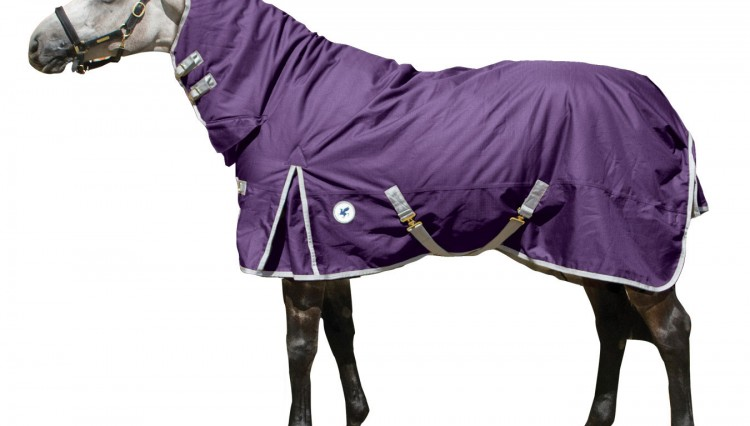 ltd edition rug Derby House 750x426 - Check this out for a MID WEEK TREAT from Derby House