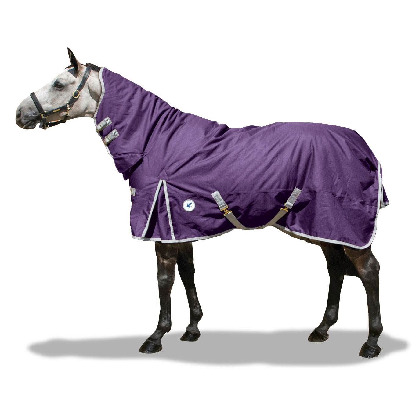 ltd edition rug Derby House - Check this out for a MID WEEK TREAT from Derby House