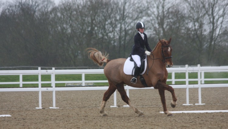 IMG 8786 750x426 - Spinal Research Dressage well supported despite the rain & cold