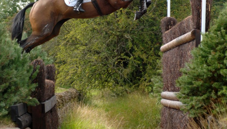 CleaPhillippsLeadThe Way Burghley1 750x426 - Event riders invited to help design new saddle