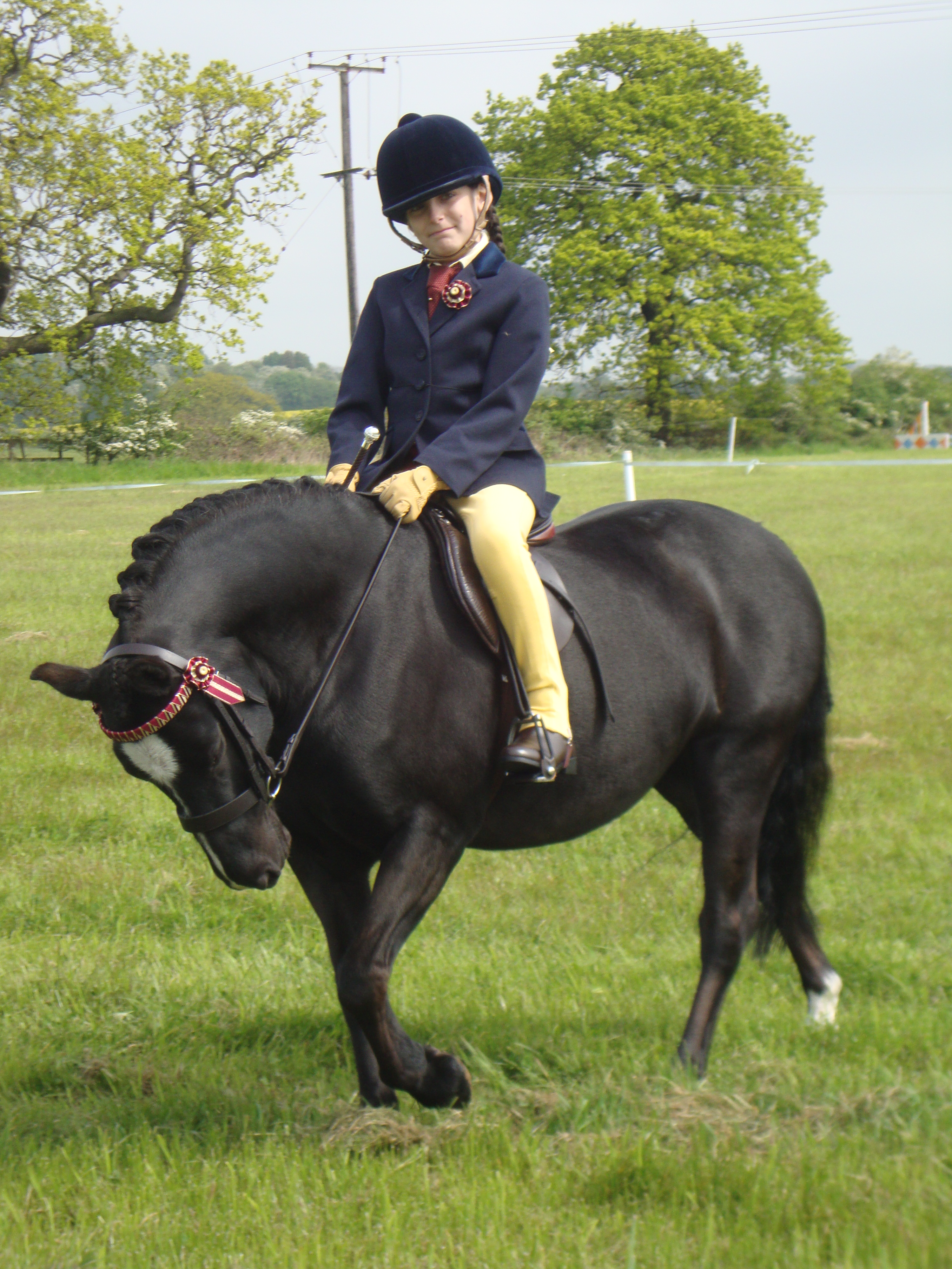 Ellie Mae Lees on Daddys Overdraft - Ilkeston and District Riding Club