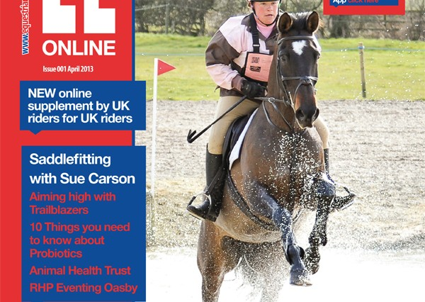 COMP APR13 Ezine cover 600x426 - Hello to EL OnLine