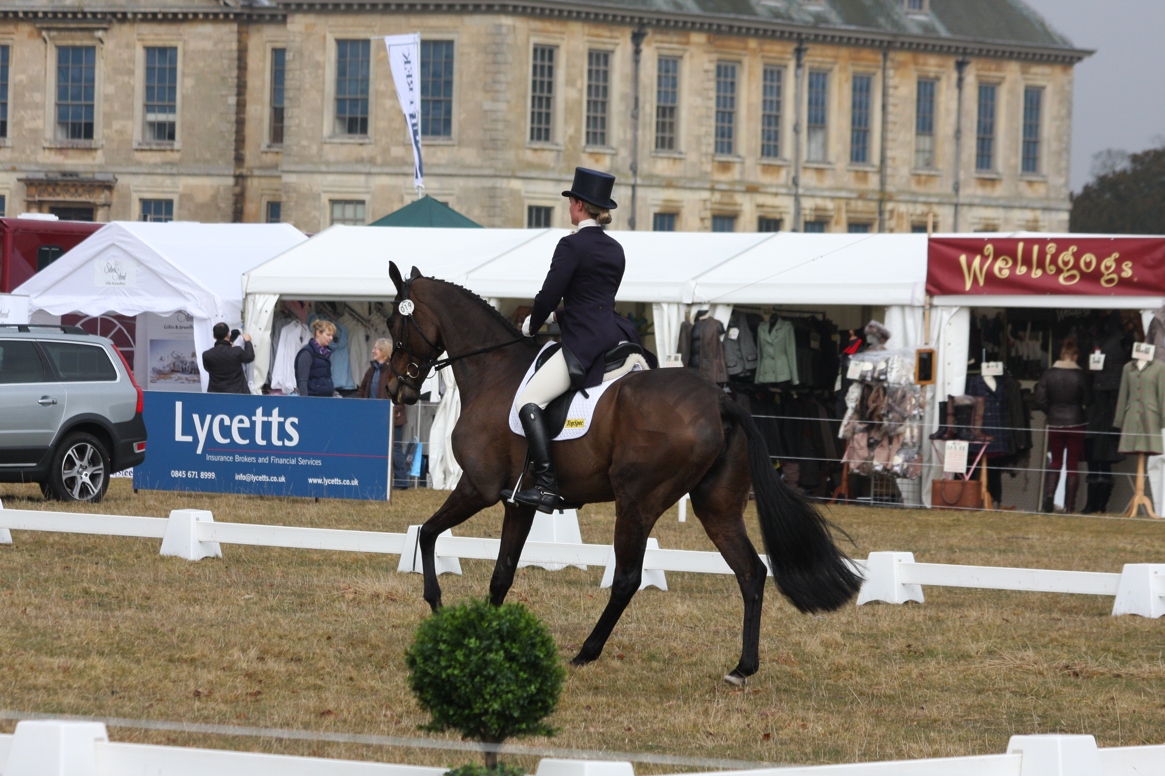 IMG 9101 - Beautiful Belton hosts Horse Trials