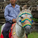 Cambodia 2012 69 1000 x 1500 150x150 - Abstracts sought for the 7th International Colloquium on Working Equids