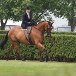 Fay Ludlow on Lorenzo 3rd ladies hunters