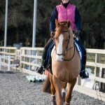 MFT Sponsored Rider 150x150 - Gayle Bloomfield wins sponsorship from Mirrors for Training!