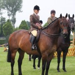 Oathill Take The Bicuit aka Hovis & Danielle Heath champion hunter