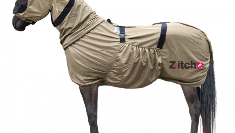 Rug Z itch 750x426 - Sweet itch? Z-itch has it covered with the new Sweet Itch Rug