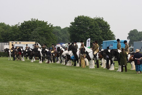 The coloured traditionals line up - Sun shines on Lincolnshire County Show