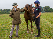 HRH Horse Welfare - HRH The Princess Royal kick starts World Horse Welfare's rehoming campaign