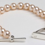 Dressage Deluxe Swarovski Pearls Pink 1 150x150 - Over 75 prizes to be won plus loads more Christmas present ideas
