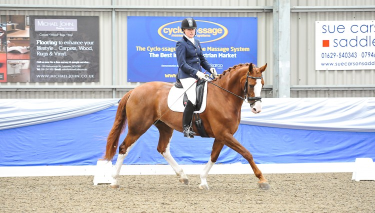 Darcy and Bert at Vale View 750x426 - Para dressage rider, Bert Sheffield's Equestrian Life February 2014