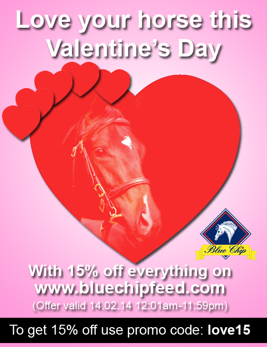 BC valentines offer - Love your horse this Valentine's Day with Blue Chip Feed