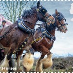Post Office Dray Horses Stamp