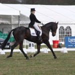 Strutting their stuff in the dressage arenas
