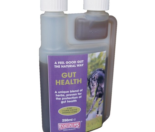 guthealth 250ml3 500x426 - Good for guts! Equimins launch new Gut Health