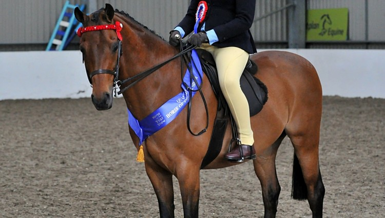 SEIBEllie Conwayn on Rotherwood Mr Pepys 1 Pony copyright SMR Photos 750x426 - Impressive Turnout At Vale View, South Essex Insurance Brokers Search For A Star Qualifier
