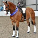 SEIBKayleigh Stockdale on Warren House Patrick 1 Cob Copyright SMR Photos 150x150 - Impressive Turnout At Vale View, South Essex Insurance Brokers Search For A Star Qualifier