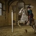 Bolsover horse photo shoot