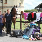 Matchmakers International donation at World Horse Welfare - image