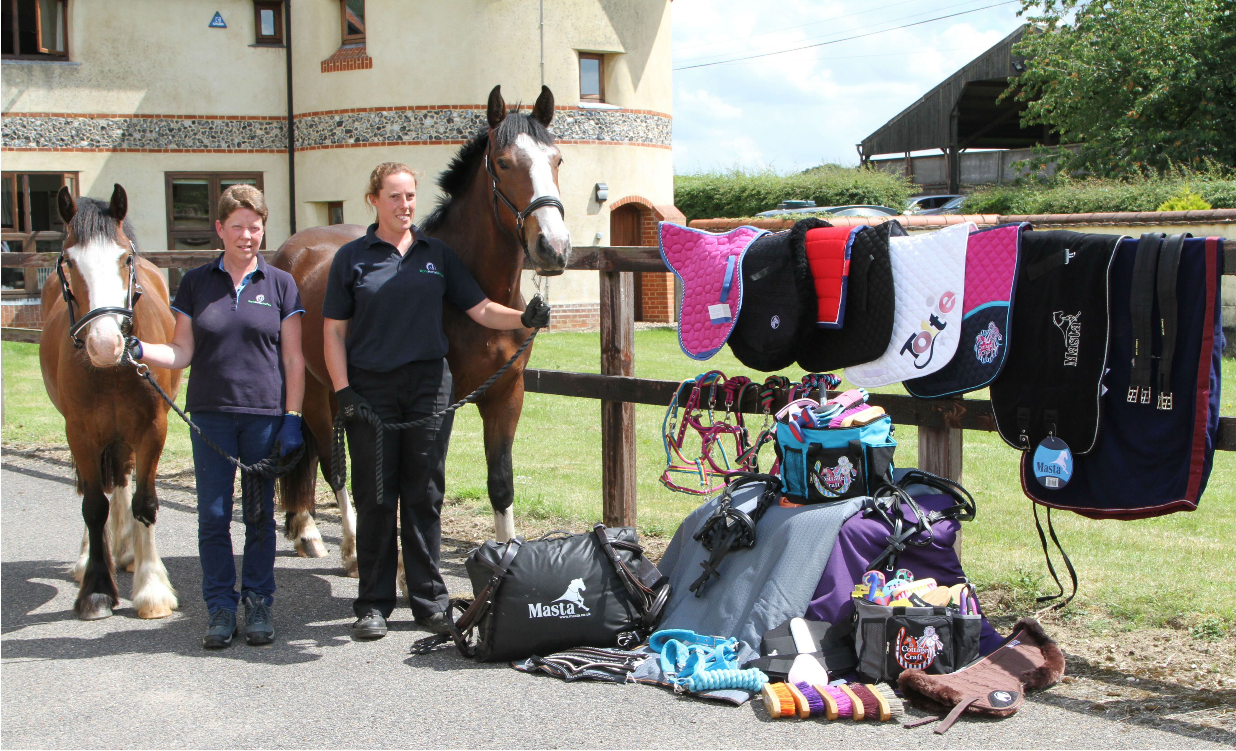 Matchmakers International donation at World Horse Welfare image - Generous donation helps horses in crisis