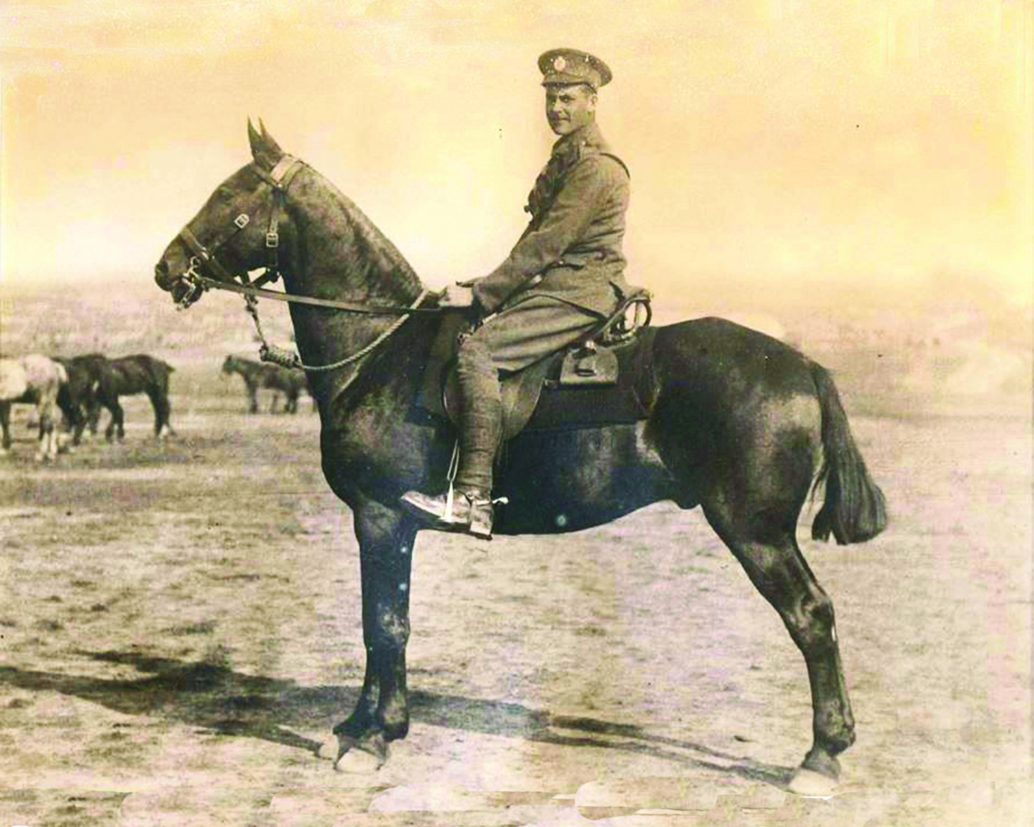 War Horse pic1 - A unique chance to ride through the battlefields of the First World War with World Horse Welfare