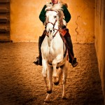 Bolsover 150x150 - Enjoy an exclusive evening of dressage in the stunning surroundings of Bolsover Castle