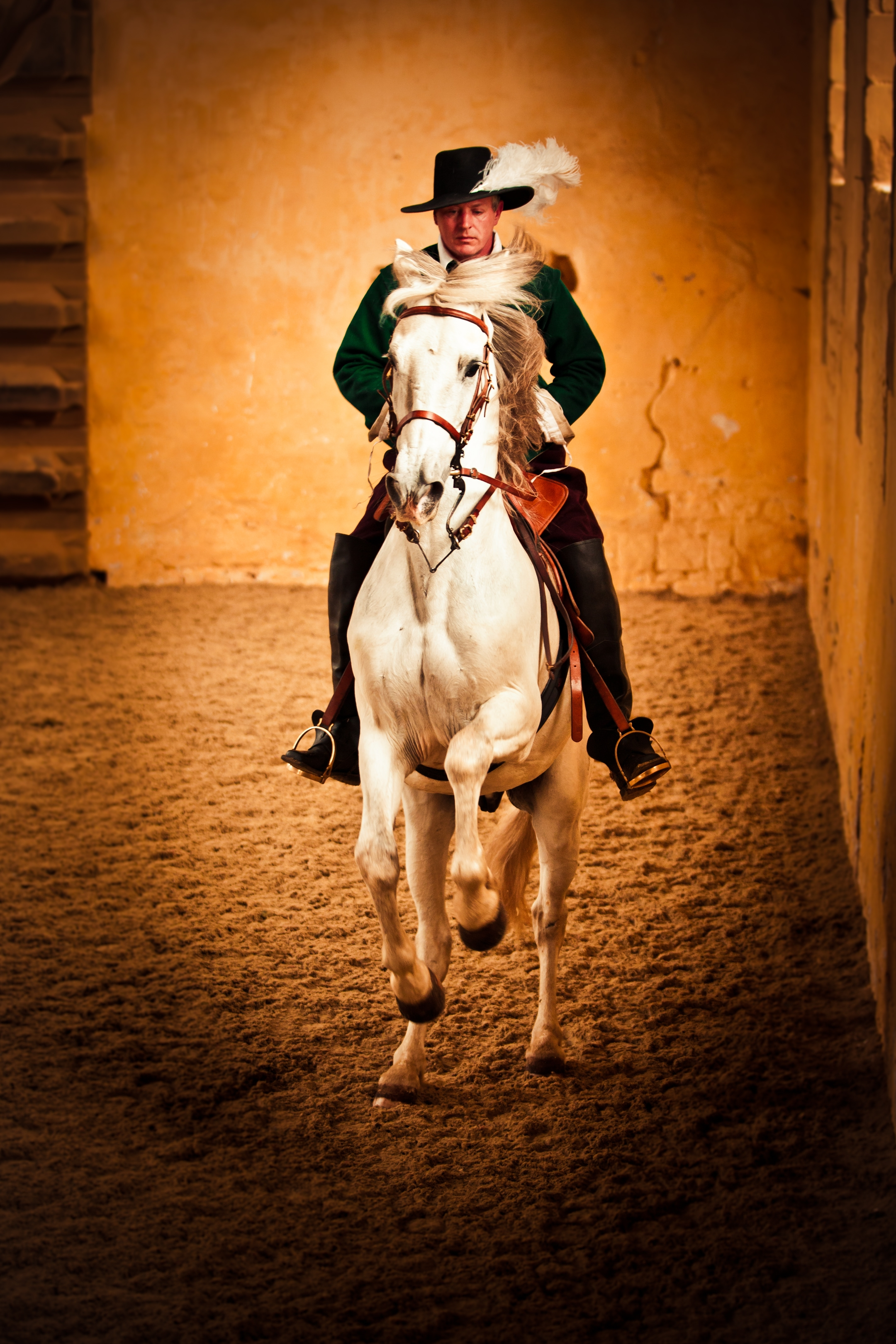 Bolsover - Enjoy an exclusive evening of dressage in the stunning surroundings of Bolsover Castle