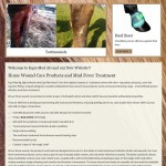 EquiMed AG New website