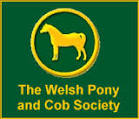 Welsh Pony and Cob logo - New hand takes reins at Welsh Pony and Cob Society