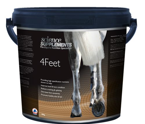 hoof image 2 science supplements 500x426 - 4Feet for Hoof Care with Science Supplements