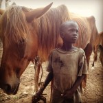 Boy and horse 150x150 - Vets with Horsepower 2015 ride again for the Gambia Horse and Donkey Trust