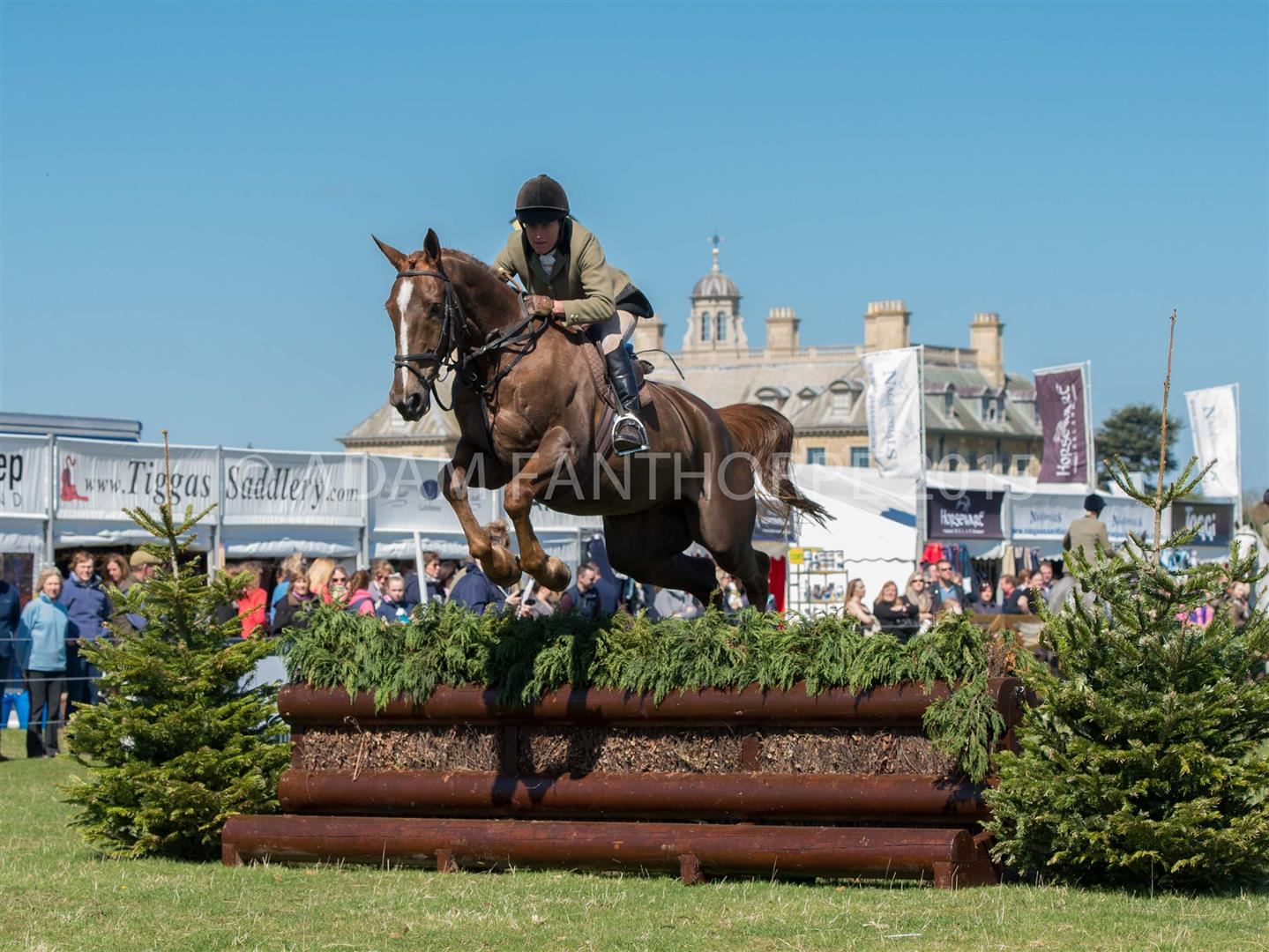 DSC 4400 Large - Skill, Precision and Bravery on display at this years' Belton Horse Trials