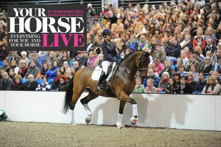 RO1 Charlotte 436x291 - Don't miss Your Horse Live