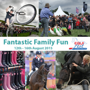 fun5 300x300 - A fantastic day out for all the family at Equifest
