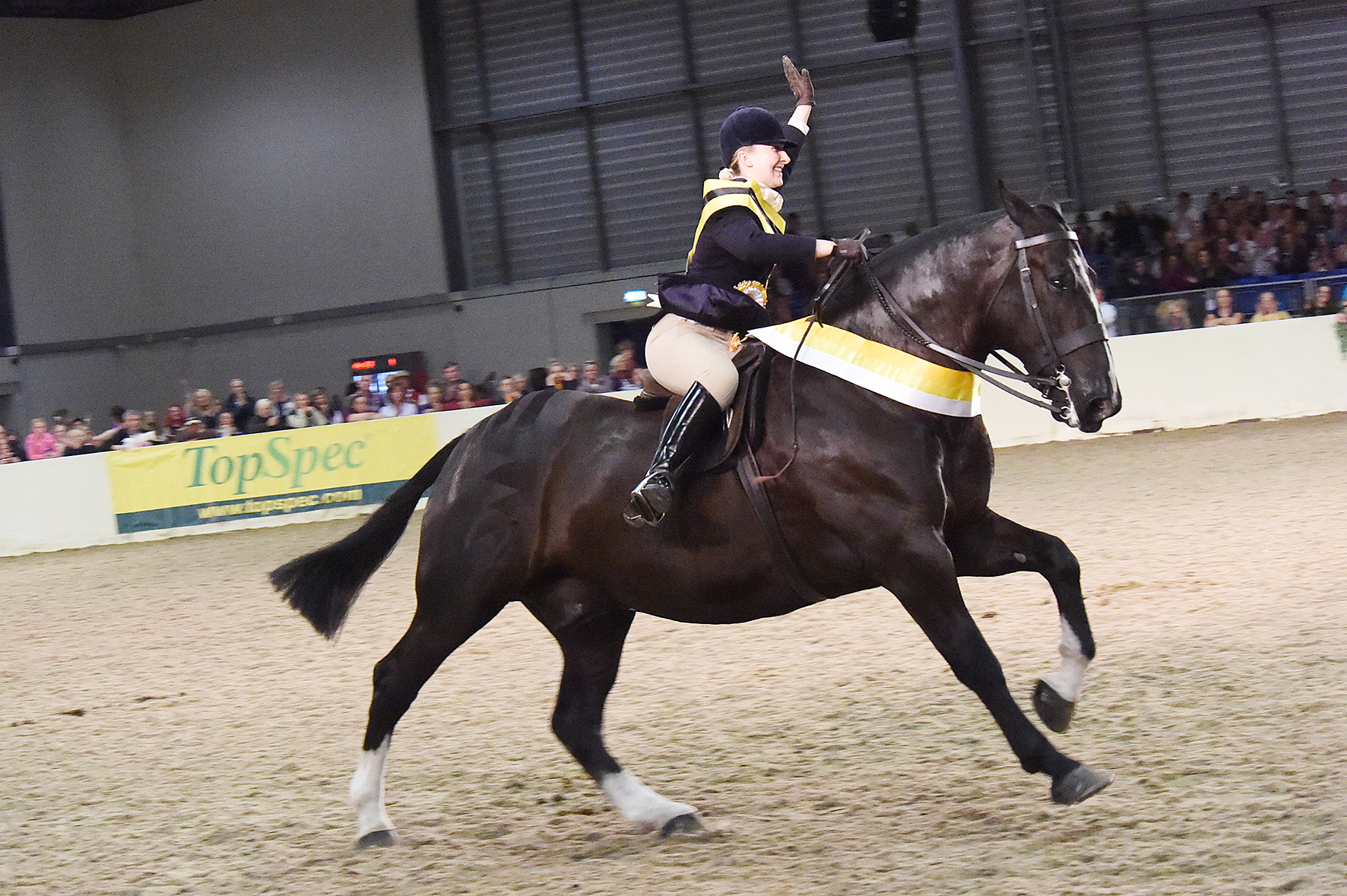 zoe 111 - Mr Belstaff is Champion of Champions at Equifest