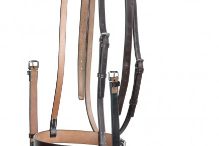 The Different Parts of a Bridle