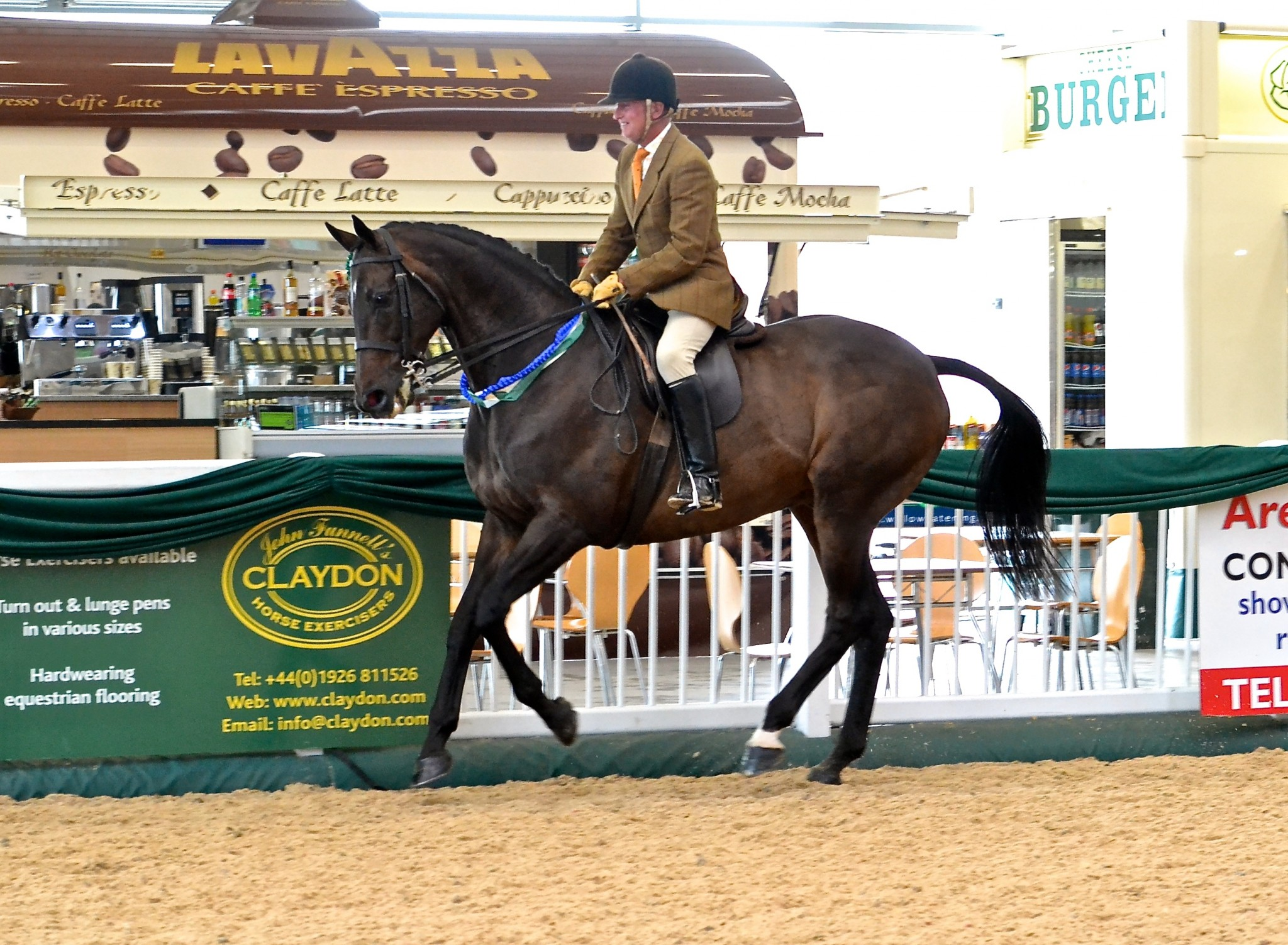 JACK THE GIANT - Showing Success and Talent at inaugural RoR National Championship Show