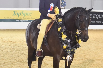 Lucille Bywater and Westfirle Mr Mcgregor 436x291 - Lucille is Rider of the Year at BSPS Summer Championships