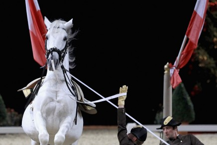 spanish riding school 436x291 - The Spanish Riding School of Vienna Announces 450th Anniversary Tour