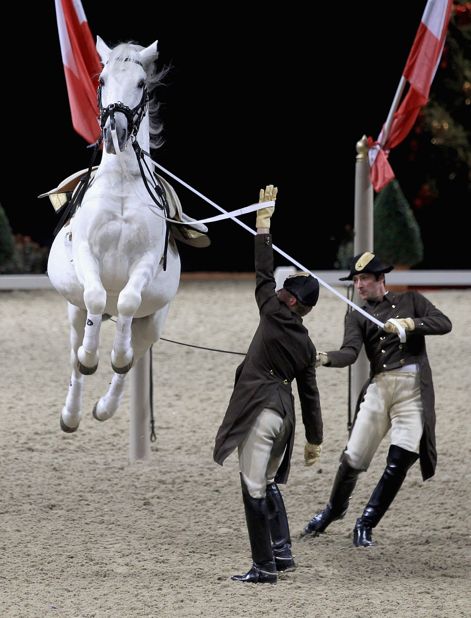 spanish riding school - The Spanish Riding School of Vienna Announces 450th Anniversary Tour