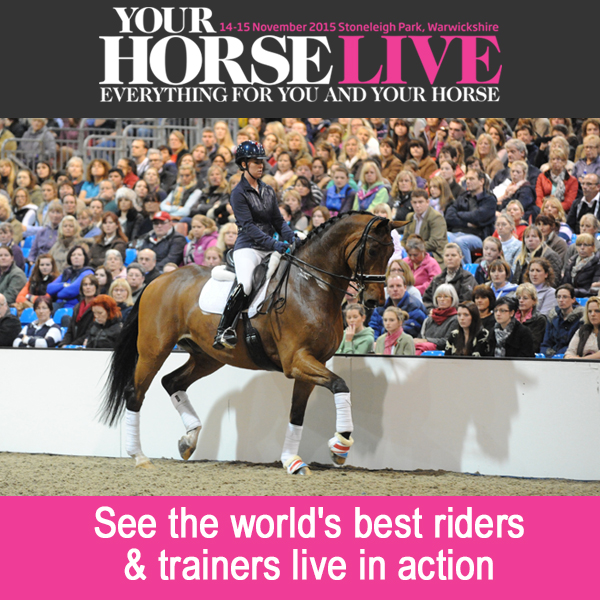 top ten 1 - Have you got your ticket yet to the UK's largest equine shopping event - Your Horse Live?