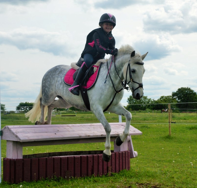 robyn Medium - Tiny Lincolnshire rider chosen from hundreds