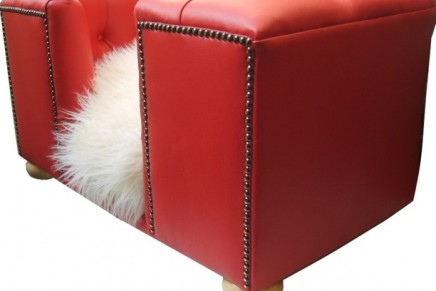 Pink Whiskers Cherry Red Bolsover Small 436x291 - Calling All Dog Lovers – Pink Whiskers…. Bespoke and Beautiful