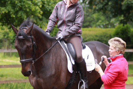 Sue Carson fits a new saddle for a client 436x291 - Saddlefitting : your questions answered