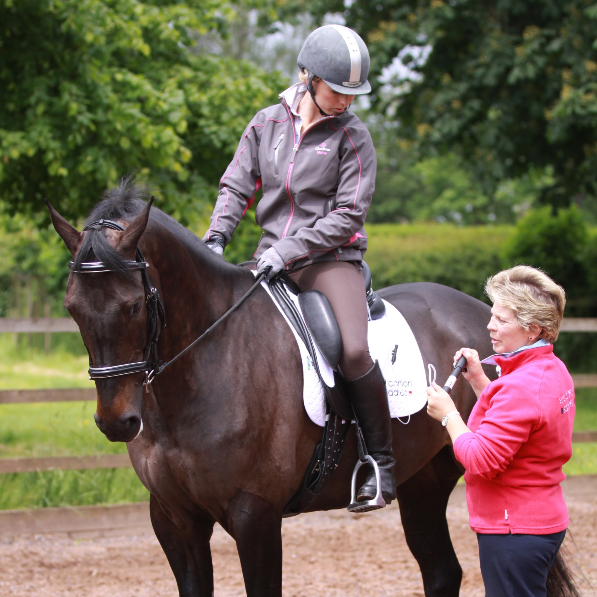 Sue Carson fits a new saddle for a client - Saddlefitting : your questions answered