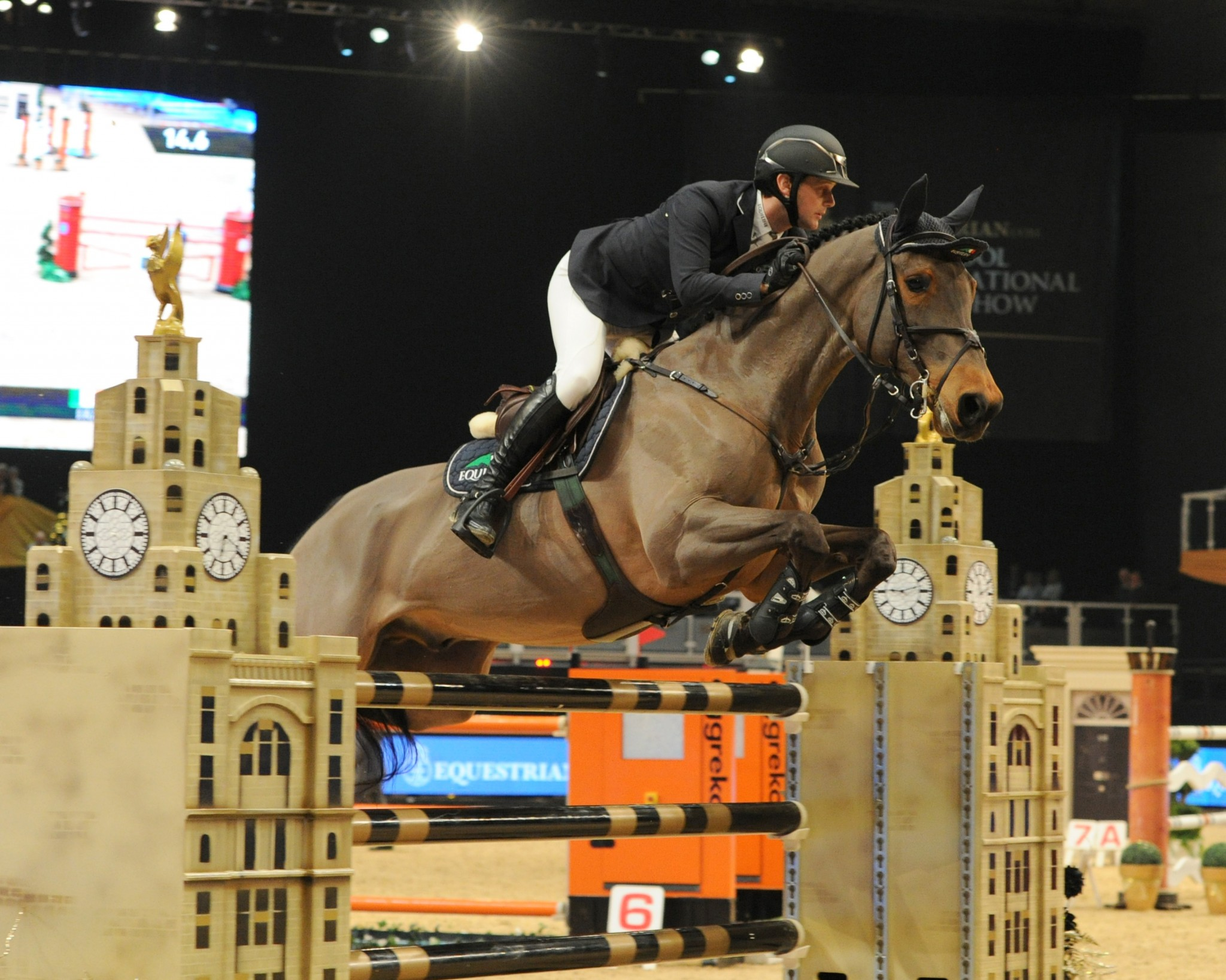 billy - Sunday Best from Equestrian.com Liverpool International Horse Show
