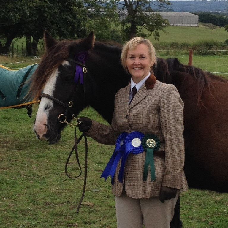 Asher 2 - Hope Pastures' Rescued & Re-homed Showing Series -  The Equestrian Trade Recognises ALL Equestrians Who Rescue Animals