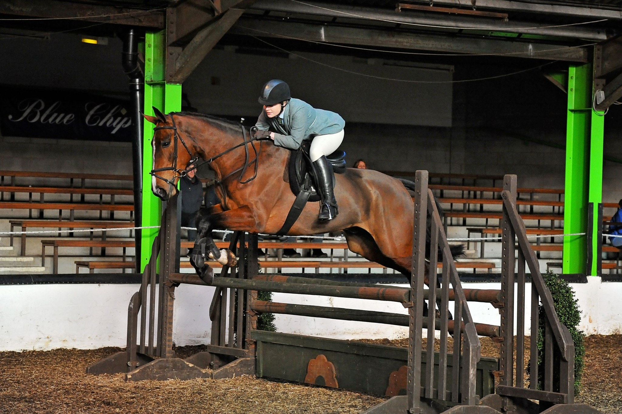 3rd Working Hunter and 3rd Riding Club Show Horse Rebecca Wolfenden and Lord Lancer. Credit SMR Photos. - Northern riders excel at Osbaldeston SEIB Search for a Star Qualifier