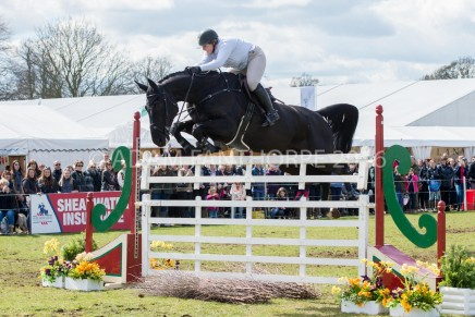 Belton Gate Jumping 436x291 - From snow to glorious sunshine, 2016's Belton had it all…